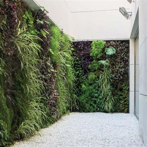 giardino in verticale giardino verticale per esterno panella