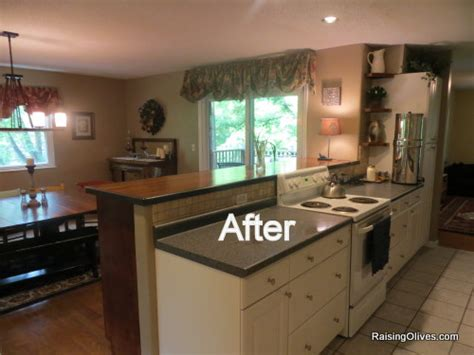 Kitchen Cabinets Discounted House Projects Or I M Officially Crazy Raising Olives