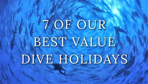 dive holidays our 7 best value dive holidays dive reviews reports