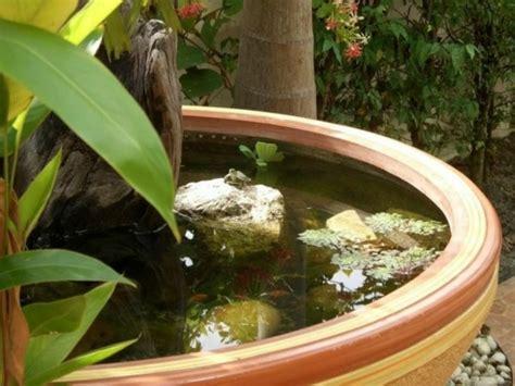 Terre Cuite Pour Bassin plantes de bassin en 20 id 233 es jardin et passions