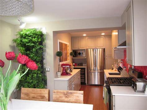 Kitchen Crashers Kitchen Makeover Transitional Green Home Chicago Design Center