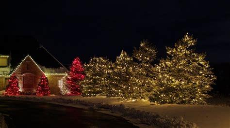 company to hang christmas lights is the light business profitable