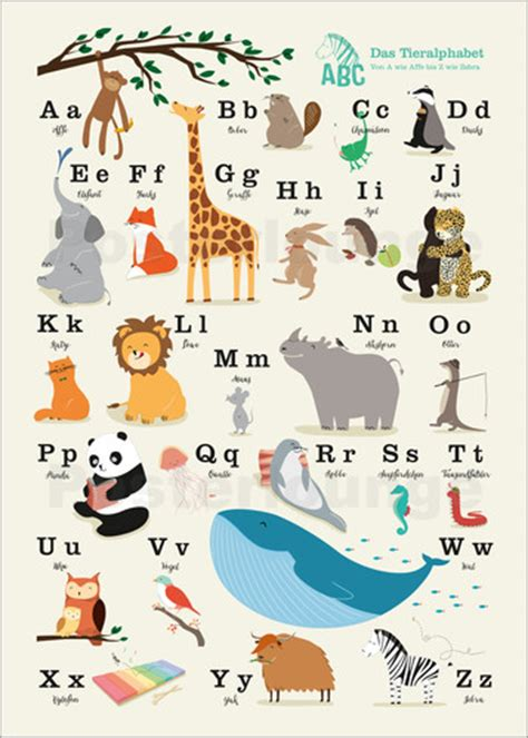 Jungle Animal Wall Stickers sandy loh 223 das tieralphabet poster online bestellen