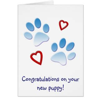 your new puppy congratulations on your new puppy cards zazzle