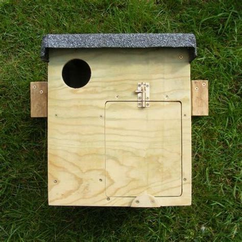 owl boxes owl nest box indoor outdoor the barn owl trust
