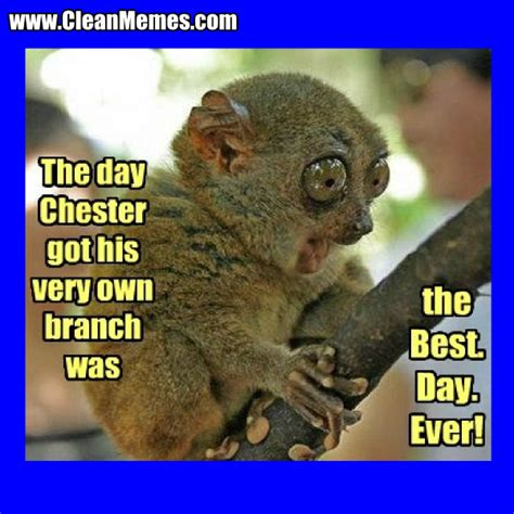 The Funniest Meme Ever - best day ever clean memes the best the most online