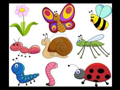 imagenes de animales vertebrados animados los animales los animales