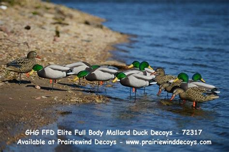 recommendations ptotecting sensitive edges when wearing kinky twist prairiewind decoys sale ffd elite full body mallard