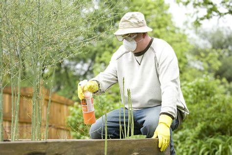 pesticide  stock photo  man spraying  pesticide