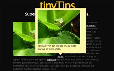 250 jquery css3 hover effects plugins tutorials 40 jquery mouseover hover effect plugins and tutorials