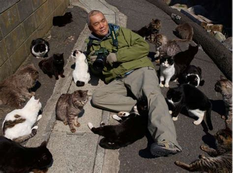 cat island japan it s like that quot cat lady quot but an 25 most beautiful pictures of cat island