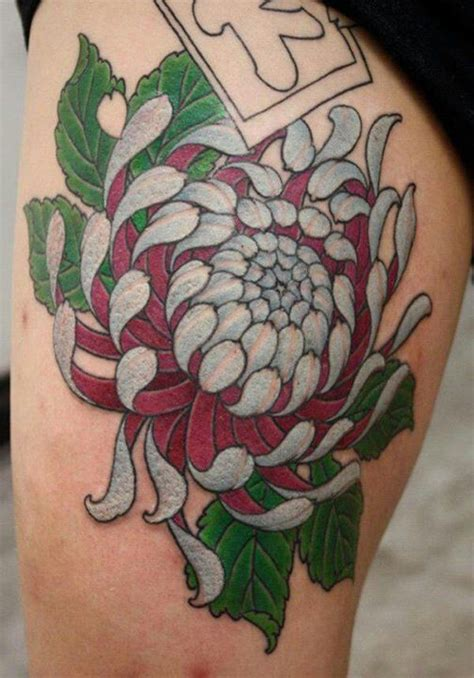chrysanthemum tattoo designs 285 best images about ideas on japanese