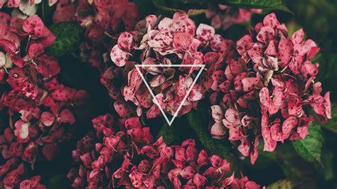 wallpaper tumblr spring flowers triangle desktop wallpaper background tumblr