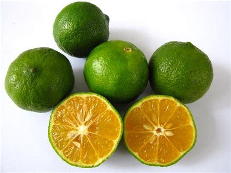 Sabun Herbal Sabun Zaitun Sabun Hijau manfaat jeruk limau untuk kesehatan sabun herbal sabun