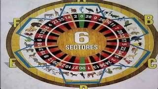 imagenes lotto activo grupo sistema para ganar en el lotto activo 100 efectivo