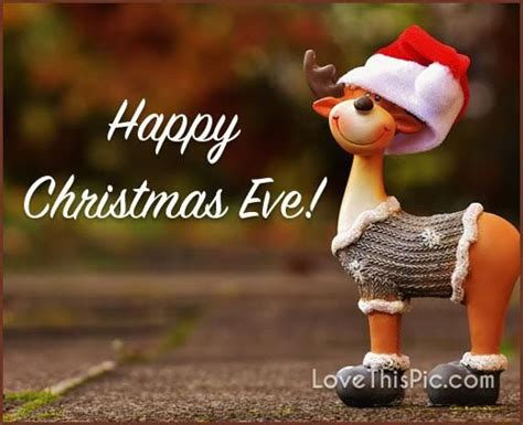 happy christmas eve cute quote pictures   images  facebook tumblr pinterest