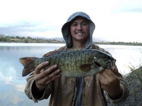 monster smallmouth bass caught    crawdad  verdugoadventures youtube