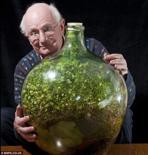 the sealed bottle garden still thriving after 40 years without fresh air or water daily mail