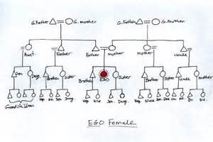 kinship chart template kinship chart family kinship chart kinship and family