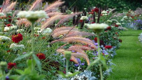 botanischer garten berlin garden bilder botanischer garten berlin germany address phone number