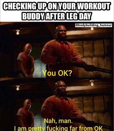 Rats Ass Meme - 957 best images about gym humor on pinterest fitness