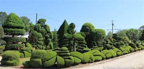haircut garden city sc pearl fryar s topiary garden bishopville south carolina