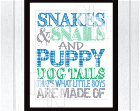 snakes and snails and puppy tails snakes and snails and puppy tails that s what boys are made of