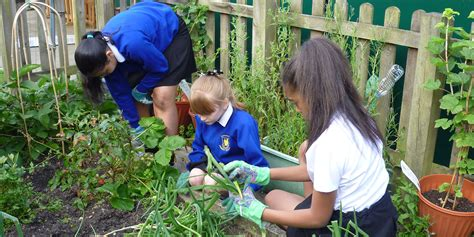 Gardening Grants Flagship School Garden Grants City