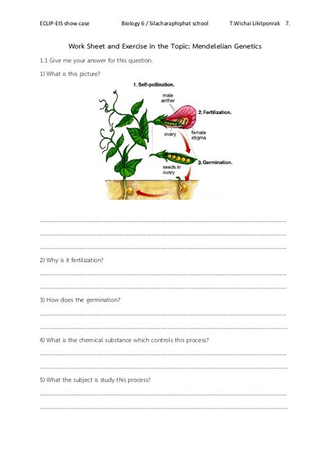 Heredity Worksheet by Mendelian Genetics Worksheet Picture And Images