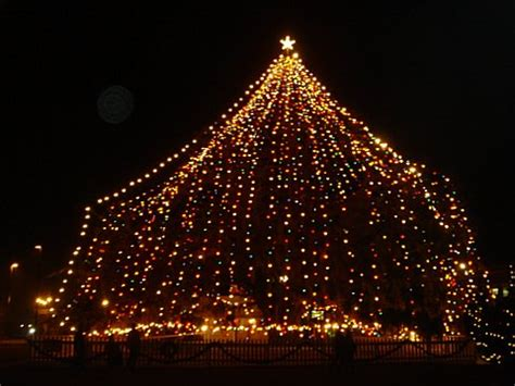 images of wilmington nc largest living christmas tree