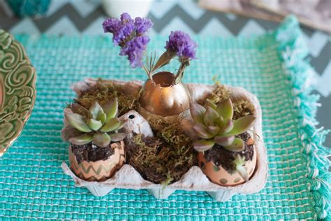 Eggshell Planters by Easter Eggshell Planters Made From