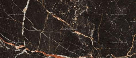 noir san laurent french marble marble guide