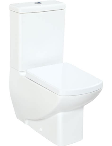 Wc Bidet Toilet Combined All Thorpe Back To Wall All In One Combined Bidet Toilet With
