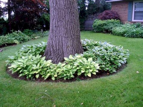 80 small backyard landscaping ideas on a budget small backyard landscaping ideas on a budget 40