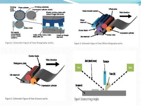to roll roll to roll printing new forms of displays solar cells and