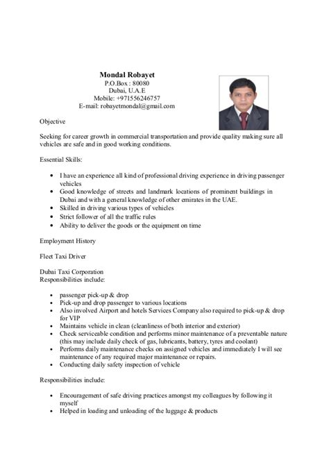 Professional Cv Writing Sles by Resume Dubai Resume Sle For Dubai Resume Ixiplay Free