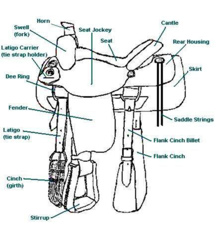 parts of a saddle saddle part names pre k and school