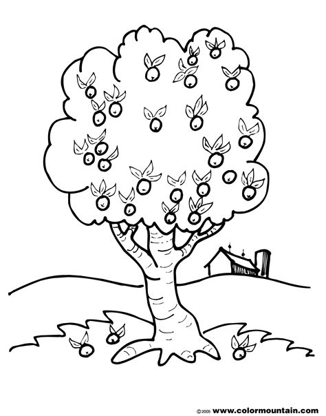 coloring page of a apple tree apple tree coloring pages printable sketch coloring page