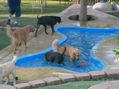 bone shaped pool in ground bone shaped pool pools