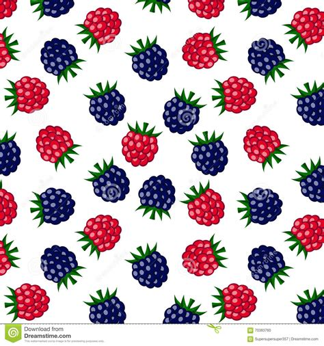 pattern download for blackberry raspberry and blackberry pattern on white background stock