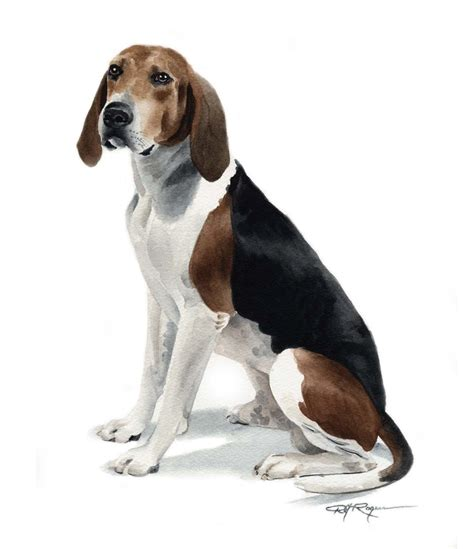 walker hound puppies treeing walker coonhound watercolor painting print