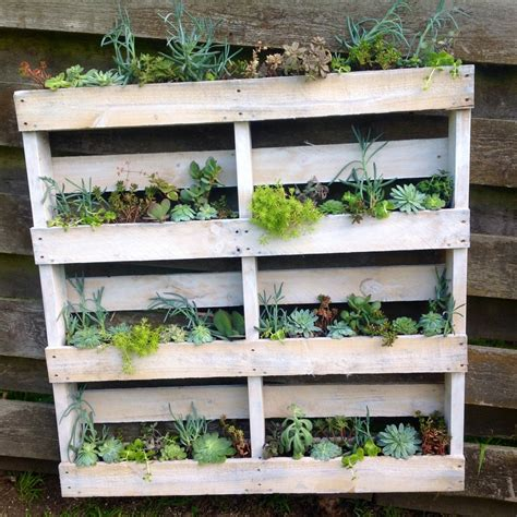 Wall Planter Diy by Diy Pallet Wall Planter Vidabela
