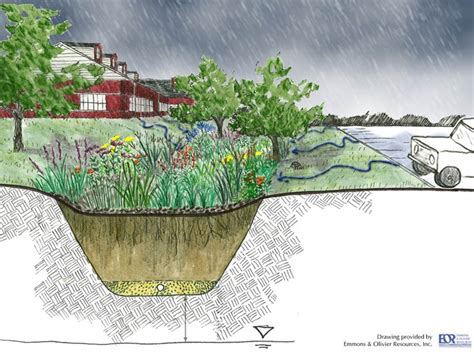 rain garden cross section pinterest the world s catalog of ideas