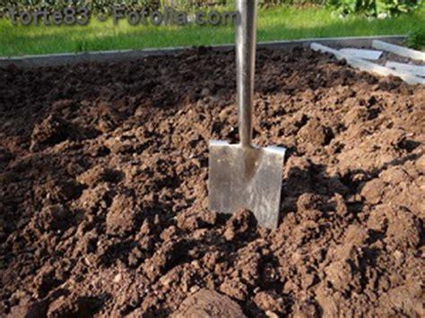 garten umgraben umgraben im garten eine wichtige pflicht