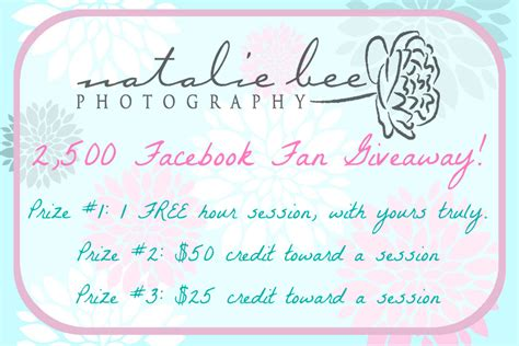 The Giveaway Rules Do Not Apply To - my 2 500 fan giveaway natalie bee photography and doula