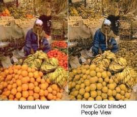 how color blind see color deficiency what causes color blind consequences