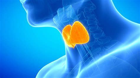 wann muss gebärmutter entfernt werden wann muss eine schilddr 252 se operiert werden ndr de