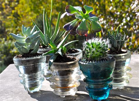 glass succulent planter diy reuse glass insulators for succulent planters dan330