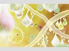 Botanicula – Amanita Design Mac Store