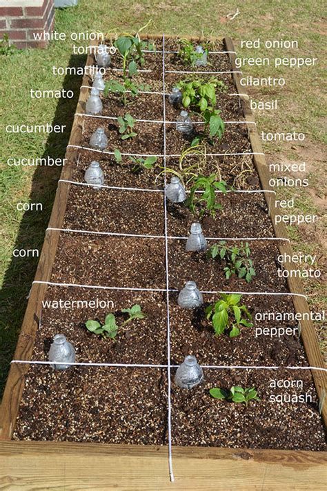 Garden On The Square by Easy Steps To Square Foot Garden Success The Garden Glove